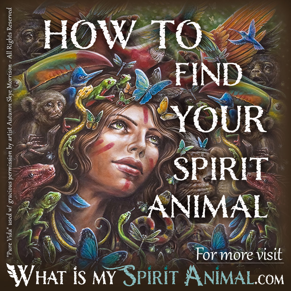 How do you know when you see your spirit guide