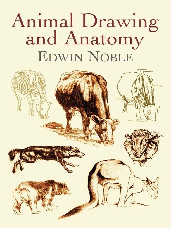 Vilppu animal drawing manual pdf