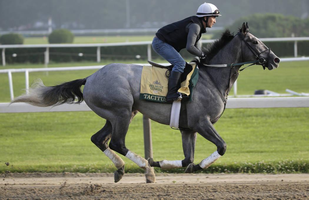 horse race analyzer instructions