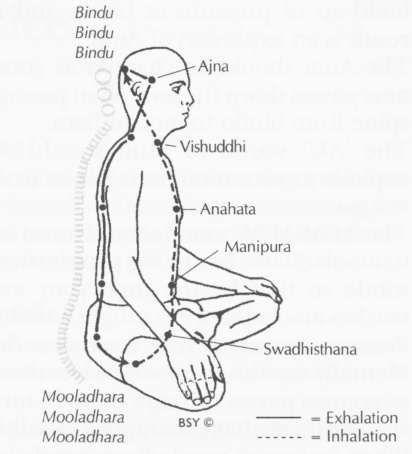Shambhavi mahamudra kriya steps in pdf