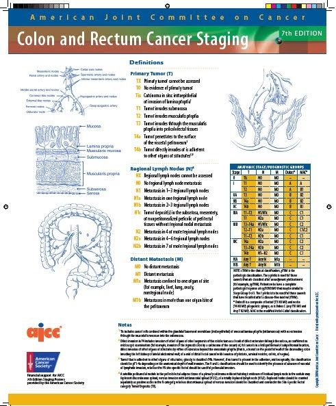 Ajcc lung cancer staging 8th edition pdf