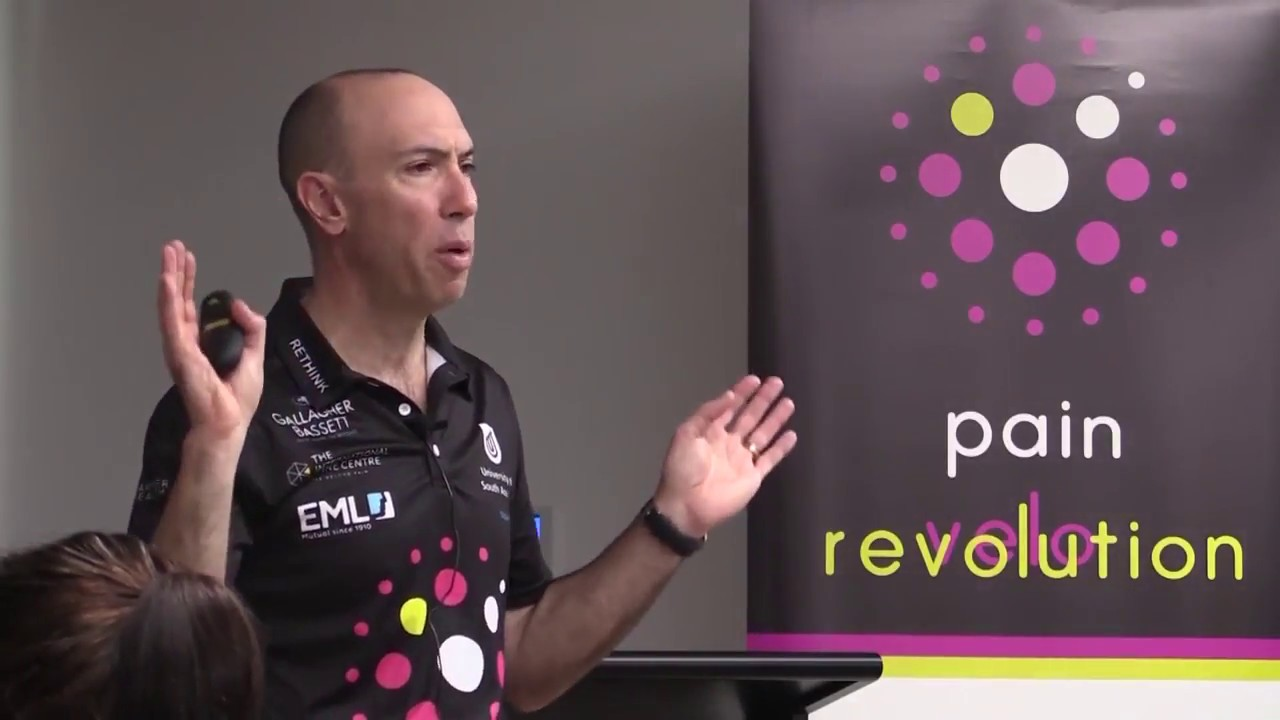 Explain pain lorimer moseley pdf