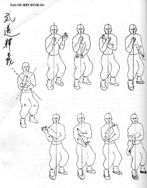Tao of jeet kune do pdf file
