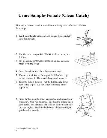 Clean catch urine instructions female