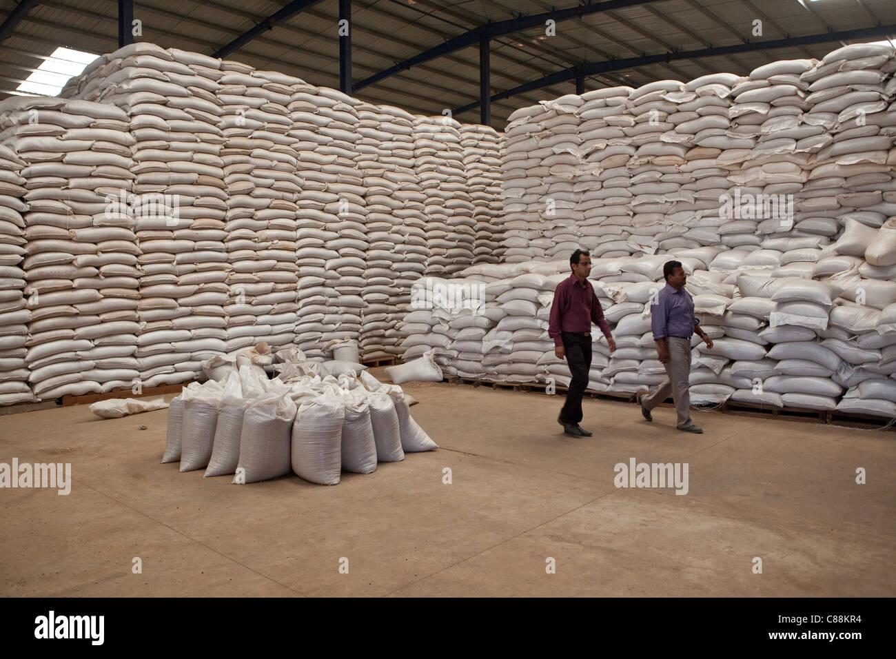 Seeds handbook processing and storage