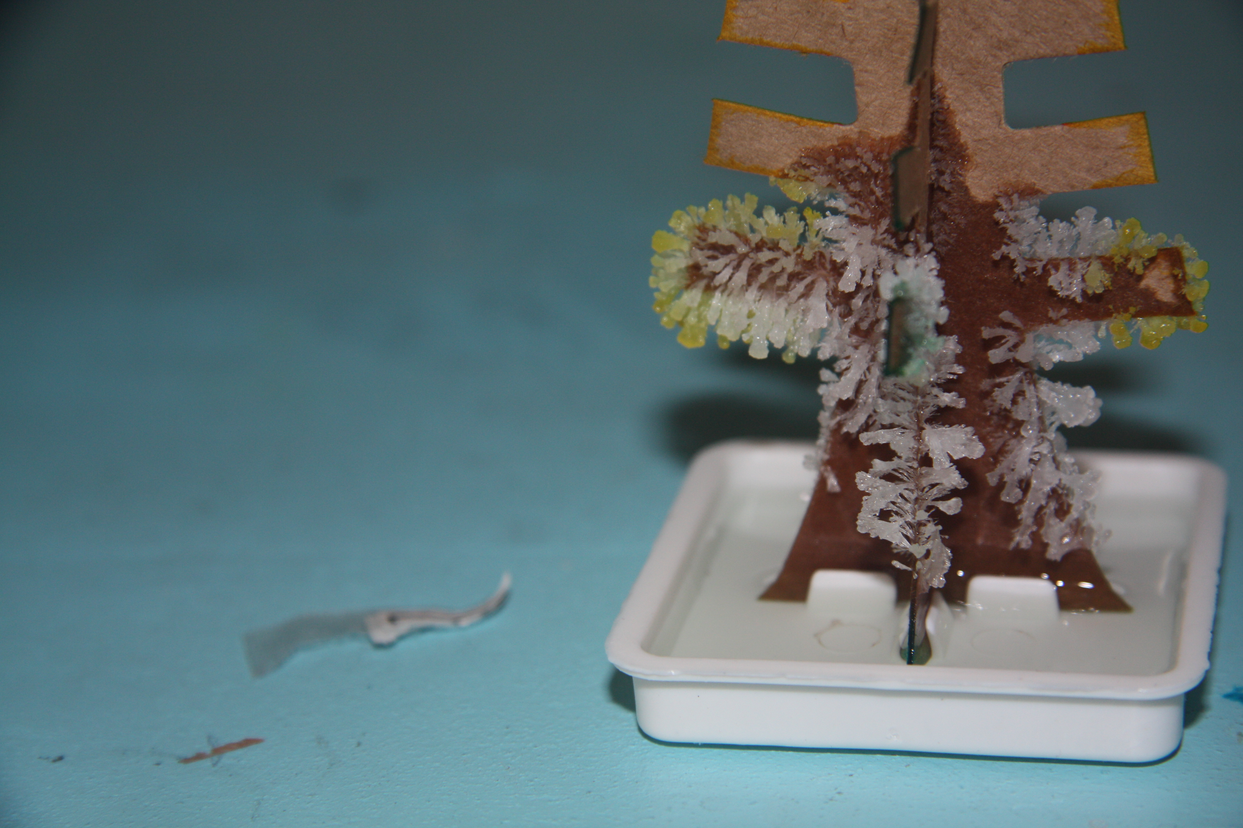 magic crystal tree instructions