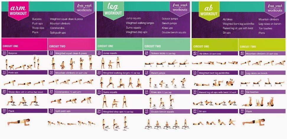 Kayla itsines bikini body guide 2 pdf free