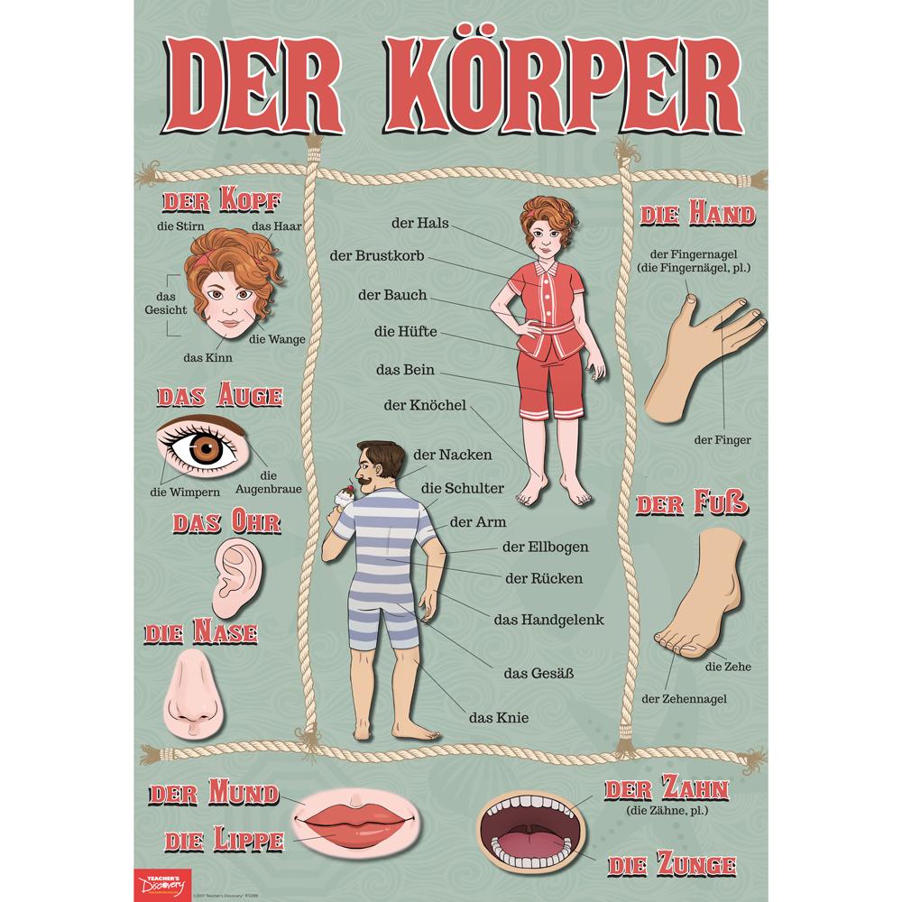 Body parts in german pdf