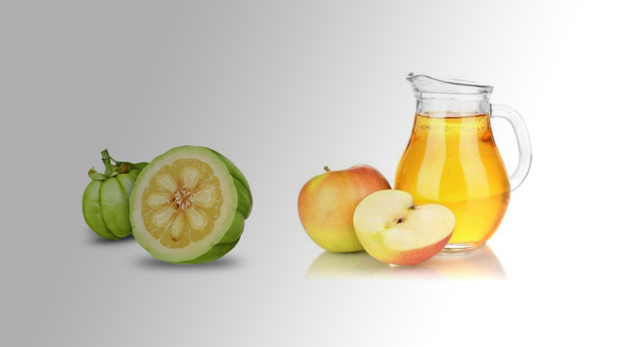 garcinia cambogia and apple cider vinegar diet instructions