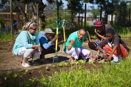 Program teaching kids how to grow vegetable