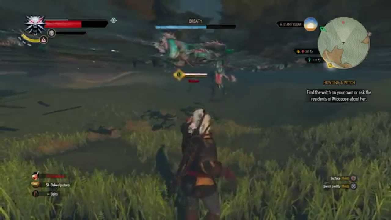 Witcher 3 how to kill a chort