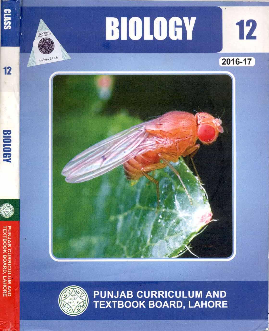 Year 12 biology textbook heinemann pdf